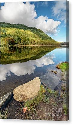 Fall Grass Canvas Print - Geirionydd Lake Wales by Adrian Evans