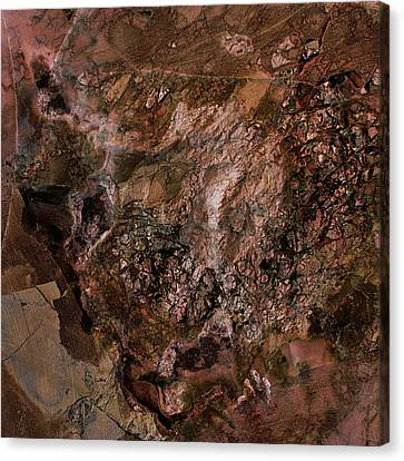 Gem 1 In Bronze Canvas Print by Sean Holmquist