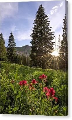 Sunburst Canvas Print - Gem by Chad Dutson