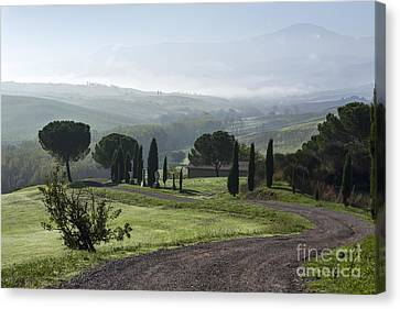 Alberi Canvas Print - General View Of Val D'orcia, Tuscany by Luigi Morbidelli