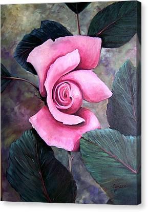 Generational Rose Canvas Print
