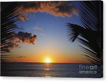Generic Sunset Canvas Print by Brandon Tabiolo - Printscapes