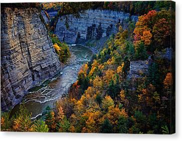 Genesee River Gorge II Canvas Print by Rick Berk