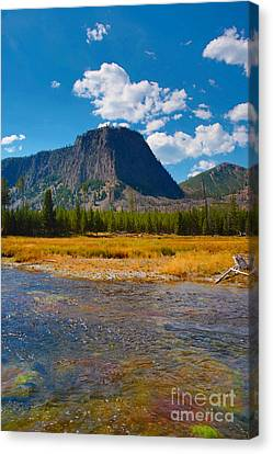 Canvas Print featuring the photograph Genesis by Robert Pearson