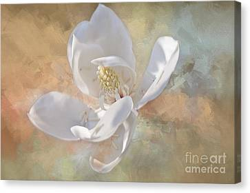 Gentle Breeze- Magnolia Collection 2 Canvas Print