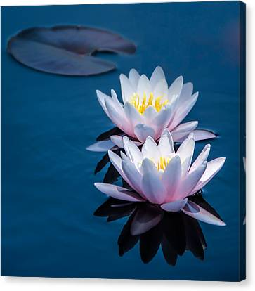 Gentle Lilies Canvas Print