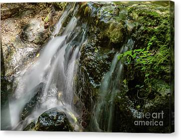Gentle Spring Fed Waterfall Canvas Print