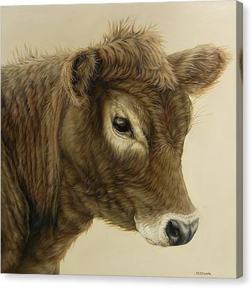 Gentle Swiss Calf Canvas Print by Margaret Stockdale