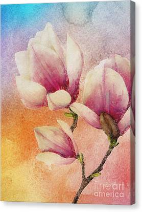 Gentleness Canvas Print