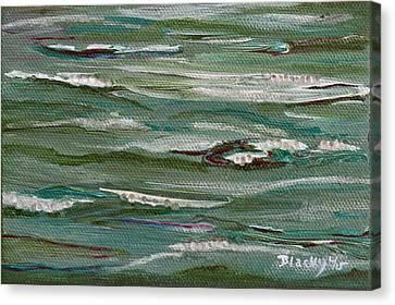 Gently Down The Stream Canvas Print by Donna Blackhall