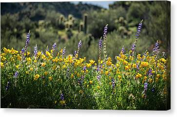Canvas Print featuring the photograph Gently Swaying In The Wind  by Saija Lehtonen