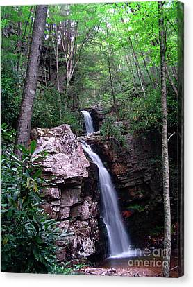 Gentry Creek - Double Falls Canvas Print