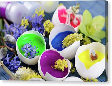 Georgeous Easter Decoration With Egg Shells And Paints Canvas Print