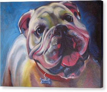 Georgia Bulldog Canvas Print by Kaytee Esser