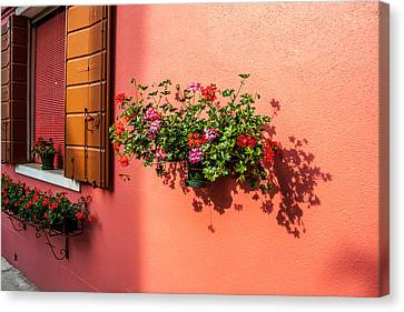 Geranium And Window Canvas Print by Peter Tellone