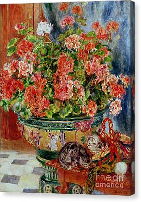 Geraniums And Cats Canvas Print by Pierre Auguste Renoir