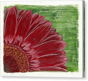 Gerber Daisy- Red Canvas Print