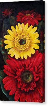 Gerbera Canvas Print by Dana Redfern