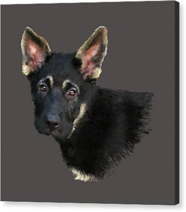 German Shepard Puppy Canvas Print by Kathie Miller