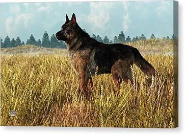 German Shepherd Canvas Print by Daniel Eskridge