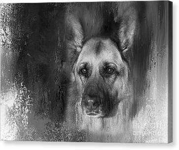 German Shepherd In Black And White Canvas Print