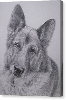 Canvas Print - German Shepherd by Keran Sunaski Gilmore
