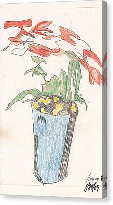Canvas Print featuring the drawing Gesture Drawing Of Poinsettia by Rod Ismay