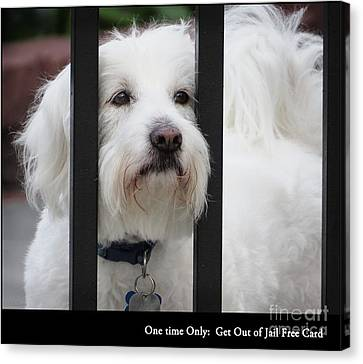 Get Out Of Jail Free Card Canvas Print by Ella Kaye Dickey
