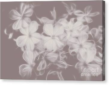 Wavy Canvas Print - Ghost Flower - Souls In Bloom by Jorgo Photography - Wall Art Gallery