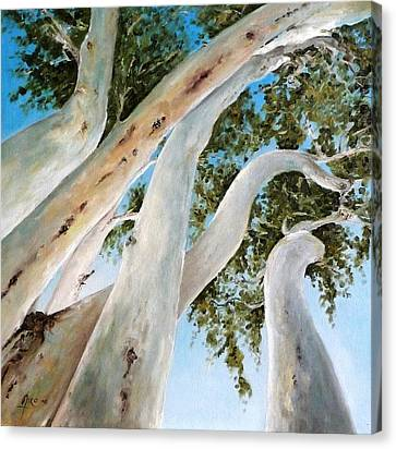 Ghost Gum Snakes Canvas Print by Diko