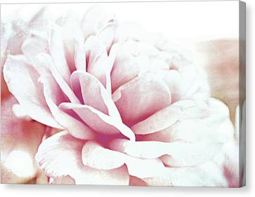 Canvas Print featuring the digital art Ghost Of Roses Past by Margaret Hormann Bfa