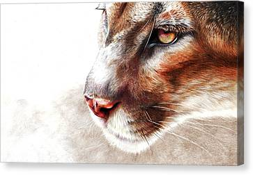 Ghost Canvas Print by Peter Williams