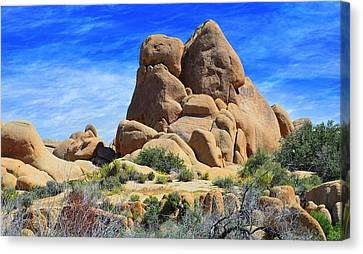 Hidden Face Canvas Print - Ghost Rock - Joshua Tree National Park by Glenn McCarthy Art and Photography