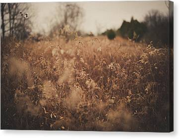 Canvas Print featuring the photograph Ghost by Shane Holsclaw