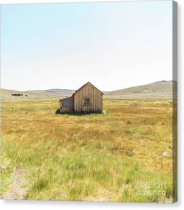 Ghost Town Of Bodie California Dsc4408sq Canvas Print by Wingsdomain Art and Photography