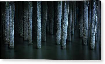 Ghostly Remnants Of The Province Lands Canvas Print