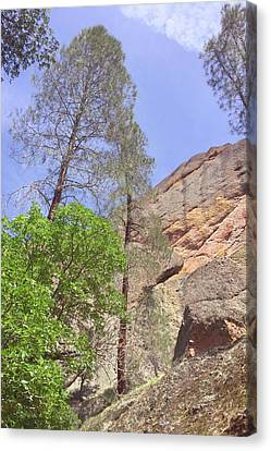 Canvas Print featuring the photograph Giant Boulders by Art Block Collections