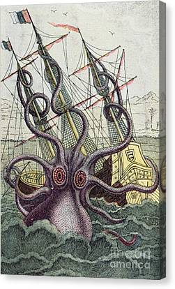 Squid Canvas Print - Giant Octopus by Denys Montfort