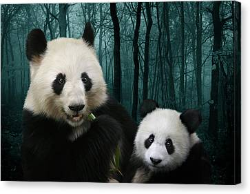 Giant Pandas Canvas Print by Julie L Hoddinott