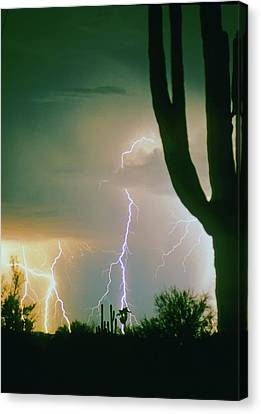 Giant Saguaro Cactus Lightning Storm Canvas Print