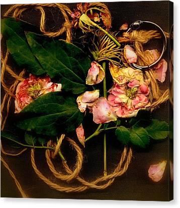 Giardino Romantico Canvas Print