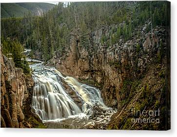Gibbon Falls Canvas Print by Robert Bales