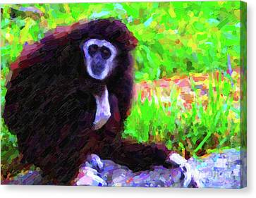 Gibbon Canvas Print by Wingsdomain Art and Photography
