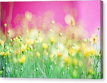 Pink Flower Canvas Print - Giddy In Pink by Amy Tyler