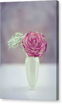 Gift Of Love Canvas Print