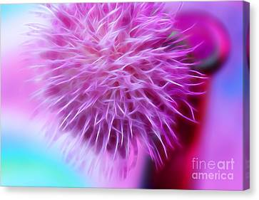 Gift Of Pink Canvas Print by Krissy Katsimbras