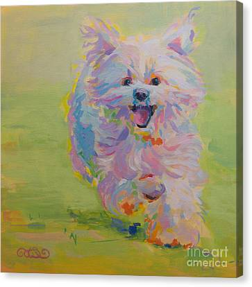 White Maltese Canvas Print - Gigi by Kimberly Santini