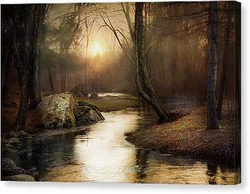 Canvas Print featuring the photograph Gilded Woodland by Robin-Lee Vieira