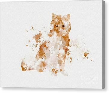 Ginger And White Cat Canvas Print