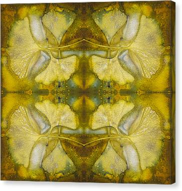 Canvas Print featuring the photograph Gingko Quad by Joye Ardyn Durham